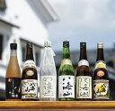 【ふるさと納税】越後の名酒「八海山」バラエティセット