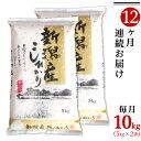 【ふるさと納税】米 定期便 10kg 白米 コシヒカリ 新潟...