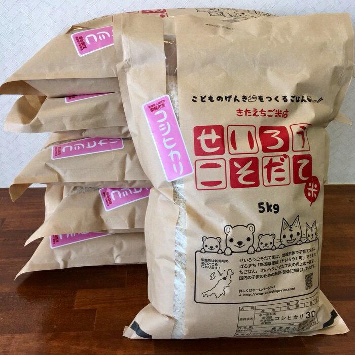 【ふるさと納税】聖籠産米コシヒカリ 5kg×6ヶ月