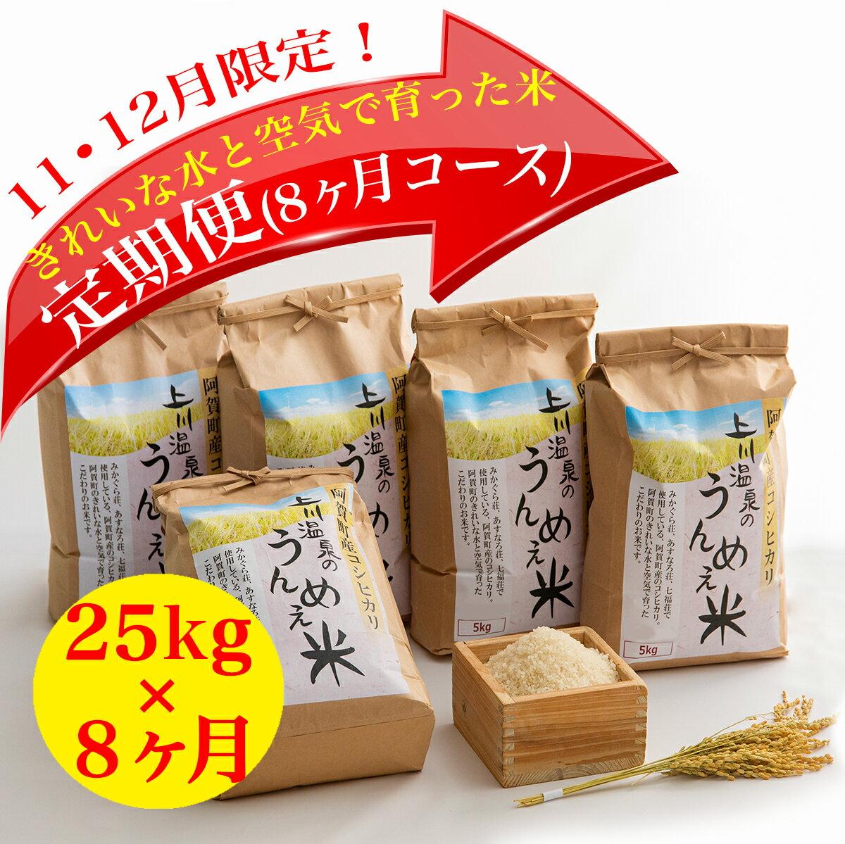 【ふるさと納税】上川温泉のうんめえ米 5kg入り×5袋 定期便8回 【11月12月申込限定品・美味しいお米を毎月お届け】