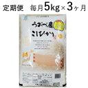 【ふるさと納税】5kg×3ヶ月定期便 富山県うおづ産米コシヒ...