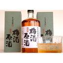 【ふるさと納税】氷見稲積梅酒原酒(2本セット) 【お酒・洋酒・リキュール類】