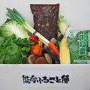 【ふるさと納税】季節の野菜と能登米こしひかり3kgの詰合せ☆世界農業遺産に認定された『能登の里山里海