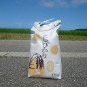 【ふるさと納税】平成28年産新米10kg『七尾産コシヒカリ』