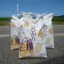 【ふるさと納税】平成28年産新米30kg(10kg×3回)『七尾産コシヒカリ』
