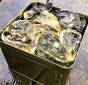 【ふるさと納税】能登牡蠣 殻付牡蠣 半缶/約5kg(約40〜...