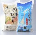 【ふるさと納税】七尾産こしひかり5kgと能登米のとひかり5k...