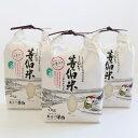 【ふるさと納税】等伯米こしひかり6kg(2kg×3袋)/世界...