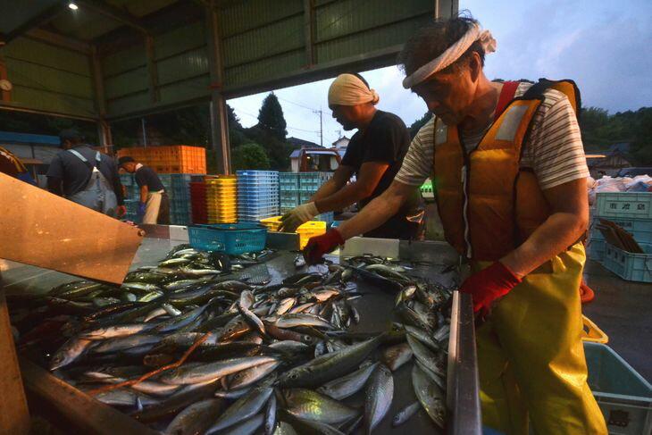 【ふるさと納税】大型定置網 漁師体験(漁乗船体...の紹介画像2
