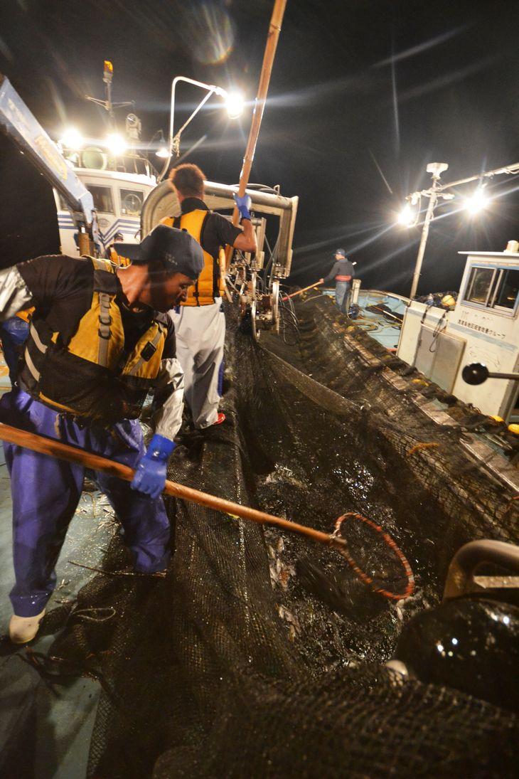 【ふるさと納税】大型定置網 漁師体験(漁乗船体...の紹介画像3