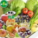 【ふるさと納税】100006. 季節の野菜・果物詰合せ(年6...
