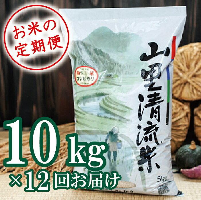 【ふるさと納税】216001. 【定期便】山里清流米コシヒカリ 10kg×12回(毎月)