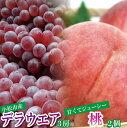 【ふるさと納税】010030. デラウェア3房&白桃2個セッ...