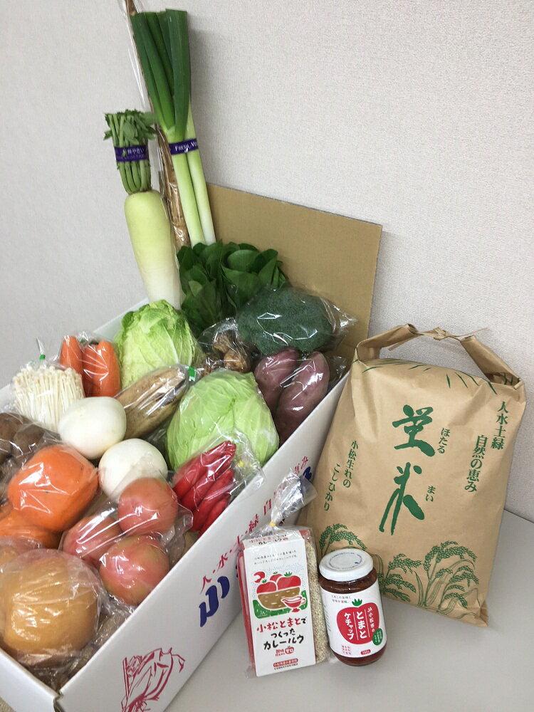 【ふるさと納税】T79.小松野菜とカレーのセット