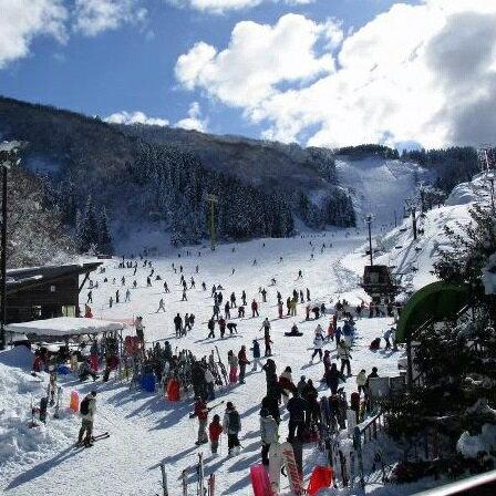 【ふるさと納税】009003. 大倉岳高原スキー...の商品画像