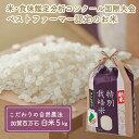 【ふるさと納税】「新米」加賀百万石特別栽培米コシヒカリ白米5kg 【お米・精米・こしひかり】