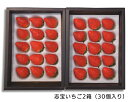 【ふるさと納税】No.110 志宝いちご2箱(30個入り)