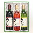 【ふるさと納税】能登ワイン3本セット...
