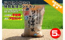 【ふるさと納税】ホタルと共生し安全・安心のホタルの里丁米コシ...