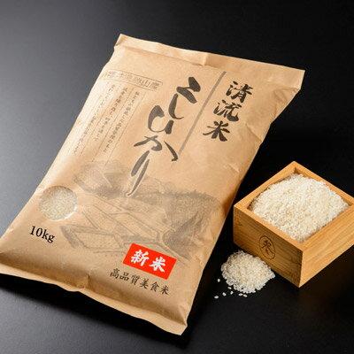 【ふるさと納税】勝山産 美食米コシヒカリ 10kgx2