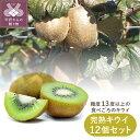 【ふるさと納税】 キウイ 完熟キウイ キウイフルーツ フルーツ 糖度13度以上 栽培期間中農薬不使用 沖縄・離島にはお届けできません k075-001 送料無料