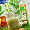 【ふるさと納税】 りんご果汁 もも果汁 山梨県産 富士の恵み...