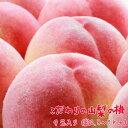 【ふるさと納税】【光センサー選果】こだわりの山梨の桃(特秀品