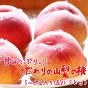 【ふるさと納税】厳選!!山梨の桃 5〜6玉(約1.5kg入)...