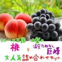 【ふるさと納税】山梨の桃と温室たねなし巨峰の詰め合わせ ※6...