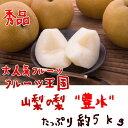 【ふるさと納税】厳選!!山梨の梨