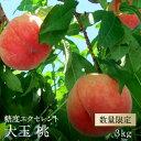 【ふるさと納税】【予約】桃「エクセレント」 大玉 約3kg
