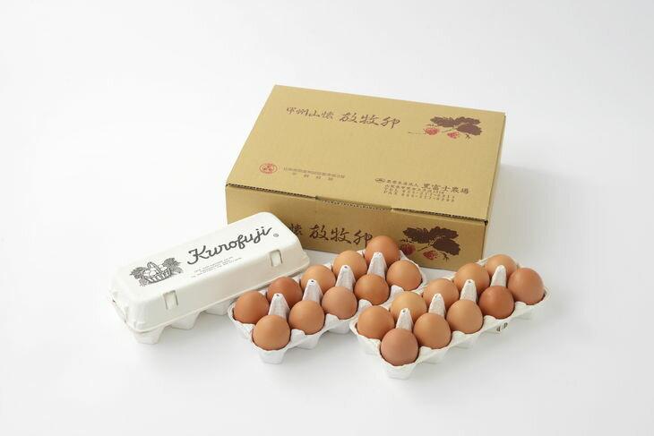 【ふるさと納税】【定期便】放牧卵30個×10ヶ月