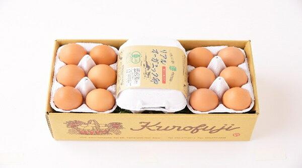 【ふるさと納税】定期便!リアルオーガニック卵18個×10ヶ月【甲斐B-22】