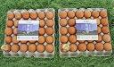 【ふるさと納税】黒富士農場の放牧卵たっぷり60個セット(甲斐