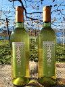 【ふるさと納税】【千葉ぶどう園】T246 デラウェアにごり(フルボトル720ml)白ワイン 2本セット...