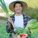 【ふるさと納税】春夏秋冬 季節の野菜詰合せセット