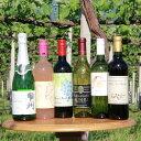 【ふるさと納税】山梨ワインバラエティー6本セット(TO−52)山梨ワインを楽しめるタイプの違う6品種のチョイス...