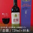 【ふるさと納税】2019年産 早川町産 山葡萄ワイン「恋紫」720ml×10本