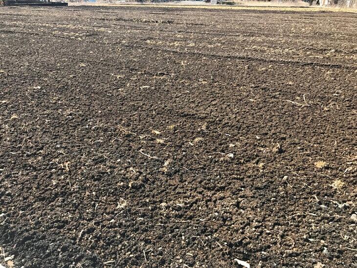 【ふるさと納税】忍野八海農園オーナー権の紹介画像2