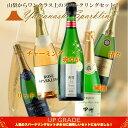 【ふるさと納税】『山梨の泡』スパークリングワイン 5本セット...