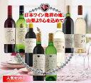 【ふるさと納税】地理的表示『山梨』ワイン 8本セット R50...