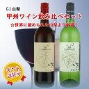 【ふるさと納税】甲州ワイン飲み比べ 赤白2本セット R108☆世界に認められた山梨より厳選。...