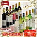 【ふるさと納税】地理的表示『山梨』ワイン 12本セット R5...