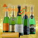 【ふるさと納税】山梨のスパークリングワインセット R505☆希少!キザン&グレイスも入った5本セット☆...