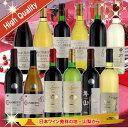 【ふるさと納税】原産地呼称 希少ワイン 12本セット R1005☆日本ワイン発祥の地、山梨より厳選。◆...