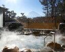 【ふるさと納税】富士眺望の湯ゆらり 入泉券 2枚 / 入浴券...