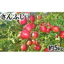 【ふるさと納税】【2019年度産】さんふじ家庭用5kg 【果物類 フルーツ リンゴ 林檎】 お届け:2019年12月10日〜2020年2月29日