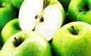 【ふるさと納税】【2019年度産】長野市産 グラニースミス 約4.5キロ 【果物・フルーツ】 お届け...