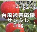 【ふるさと納税】台風被害応援りんご【訳あり】サンふじ約5kg...
