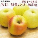 【ふるさと納税】名月 特秀リンゴ 約11〜18玉 約5kg 《黒岩果樹園》■2021年発送■※11月